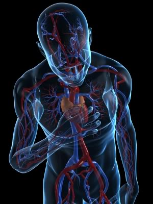 Natural History Study Describes Progression of Cardiac Abnormalities in Sanfilippo Patients