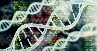 NAGLU mutations and Sanfilippo type B/Sanfilippo News/the double helix of DNA