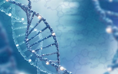 Genetic Counseling with Sanfilippo Syndrome and Why It's Important