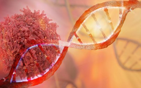 New Stem Cell Lines Derived From MPSIIIB Patient May Help Improve Preclinical Research
