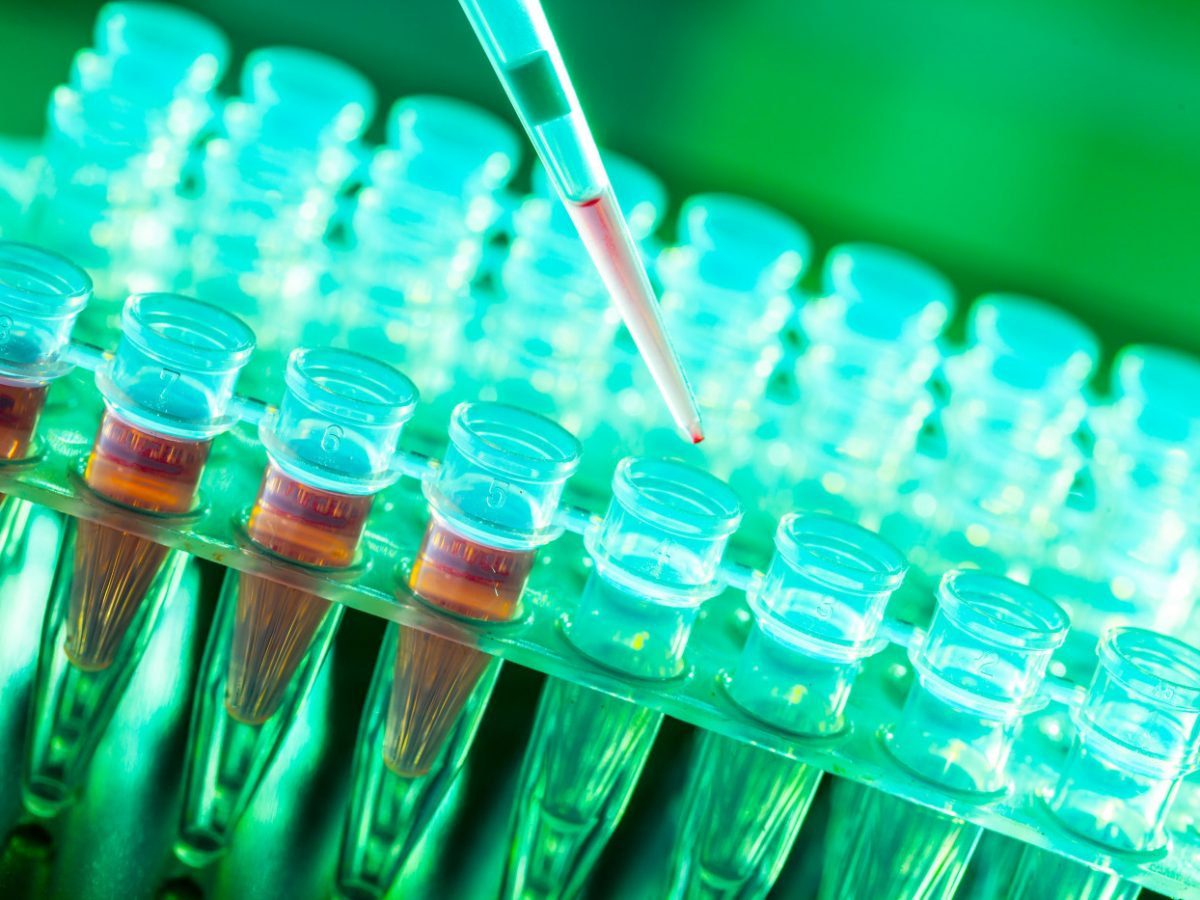 gene therapy work